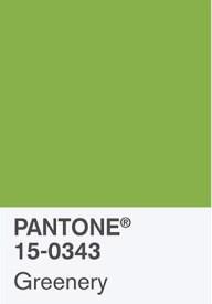 verde-vegetazione